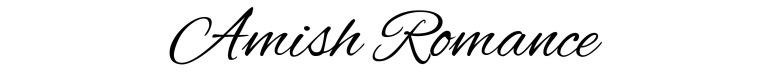 Amish romance Amy Lillard romance author http://www.amylillardbooks.com #AmyLillardBooks